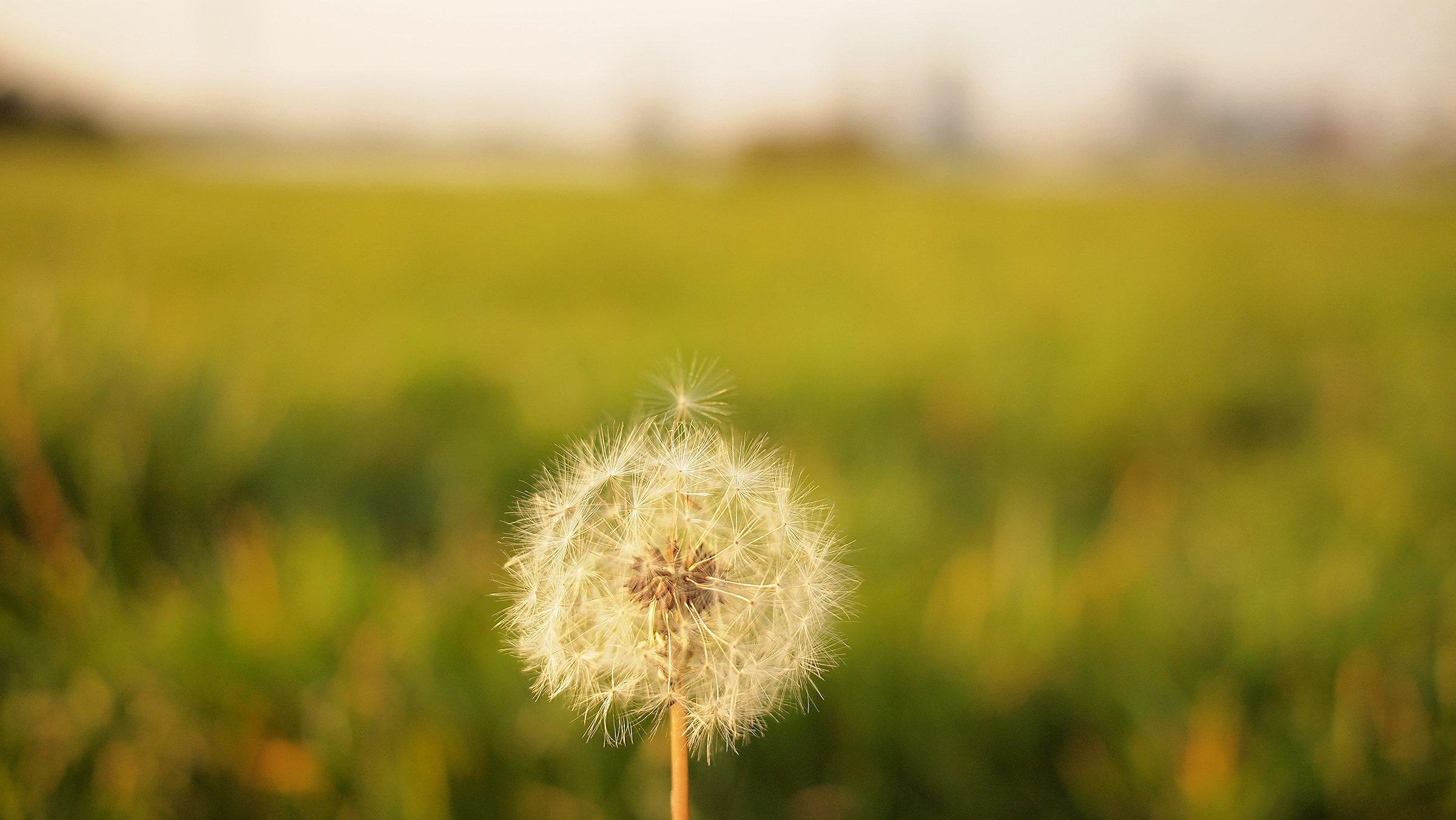 Vårdepression- Är våren bara härlig eller skapar den oro?