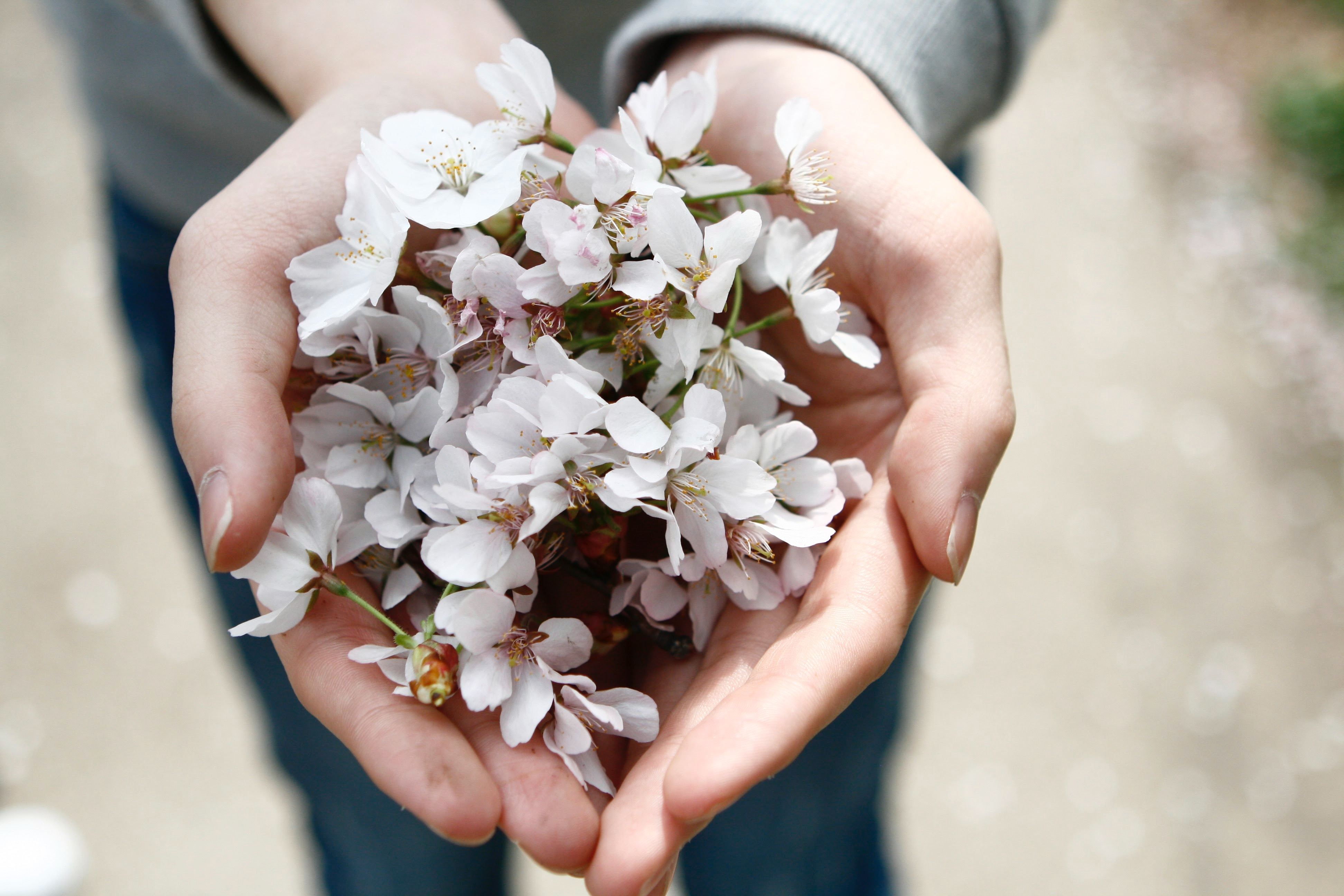 Jag är rädd för våren – Vårdepression